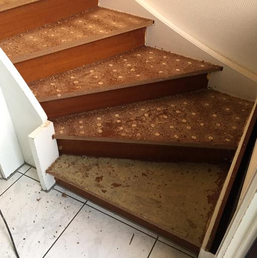 Treppe ohne Teppich und mit flachen Bohrungen für das Laminat
