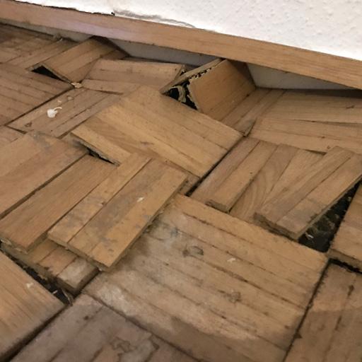 Sichtbare Spuren der Quellkraft von Holz nach Wasserschaden im Parkett